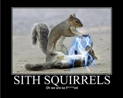 SITH SQUIRRELS by lizcat14