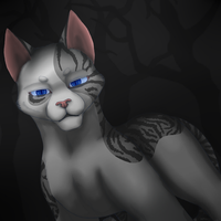 Ivypool in the Dark Forest by ShidatheUmbreon