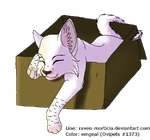 Ovipets Cattus Adoptable Example by emgeal