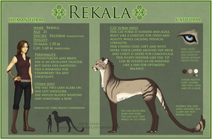Rekala Reference Sheet 2011 by RekalaRain