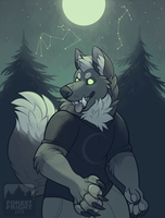 set with stars (2015) by ForestFright
