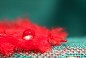 Red Teardrop by alkimh