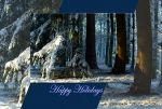 Pines doorway - card by steppeland