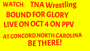 TNA BOUND FOR GLORY 2015 by EarWaxKid