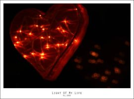 Light Of My Life by Mr808