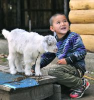 boy and sheep by laogephoto