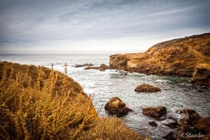 Point Lobos 5 by KBL3S