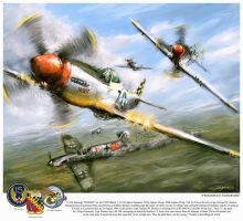 World War 2: P 51D Thisizit 'Checkertails' by VitoSs