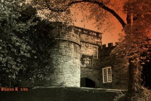 Castle Towers by Gothic-Mystery