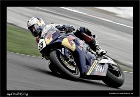 Jonny Rea by Andrew-and-Seven