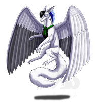 Request- ID for Falgor by Narncolie