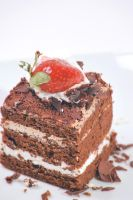 Chocolate cake by graphit3