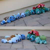 Squirtle/Bulbasaur Group Evolutions