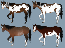 [CLOSED] Horse Adoptables by Eduscia