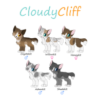 Cloudyclifflets Take Two by rainwolfeh