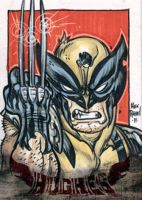 wolverine p.s.c by illustrated1