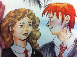 Ron and Hermione by Darkus04
