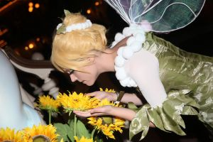 Tinker Bell by Nerine-ayalaure