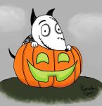 Sparky's Halloween Pumpkin by sailorlovesong