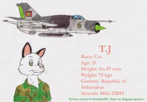 TJ and his MIG-21BIS by DingoPatagonico