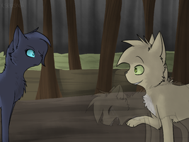 Bluestar and Thrushpelt by campinq