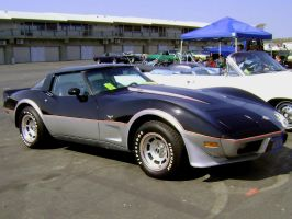 1978 Corvette 25th Anniversary by Partywave