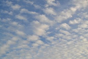 Love the pattern of the clouds by Jlyn1031