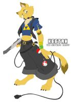 Keetah the Nintendo Bandit 2 by Nyaasu