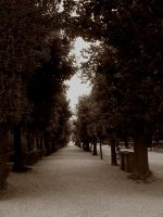 A stroll in Vienna by ordre-symbolique