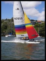 Hobie 16 by Ackriff