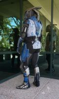 Tallus'Vakarian Vas Normandy Cosplay (Back) by ammnra