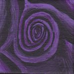 Purple Rose by Bex013
