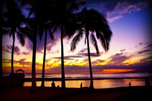 Waikiki Sunset 11 by palina32