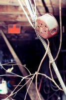 Wire and Vines by AcceptedOutcast