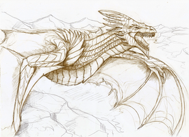 Dragon sketch by Dimenran