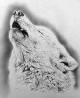 Howling Wolf by AnnaShell