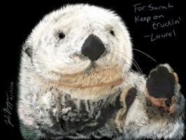 Sea Otter by dr-schreaber