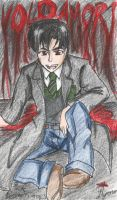 HP: Tom Riddle by galaxyofgover