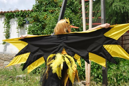 Zapdos 05 by TheQueenMab