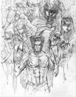 Logan san and friends by Peter-v-Nguyen