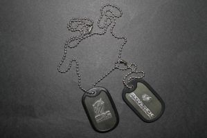 Raiden's Dog Tags by sabresteen
