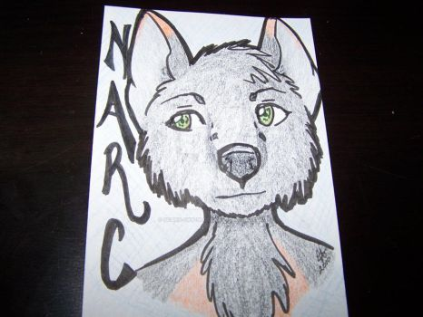 Narc Badge by scars-cry-blood