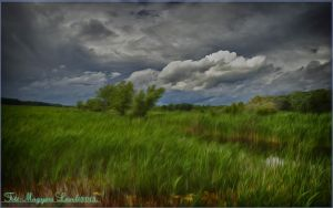 Hungarian landscapes. HDR-fantasy. by magyarilaszlo