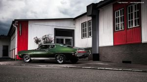 Green Torino by AmericanMuscle