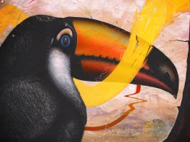 Toucan by LaurenceAndrews