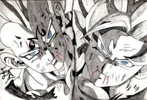 Goku vs vegeta by edwinj22