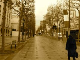 A day's work..Champs Elysees by Noemy009