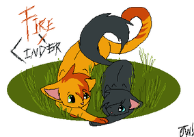 Firestar x Cinderpelt by Optimistic-Whiteout