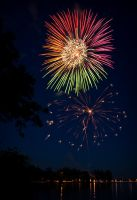 Fireworks 2010 1 by Shelagnoa