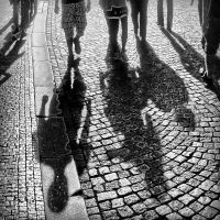 shadows by crh